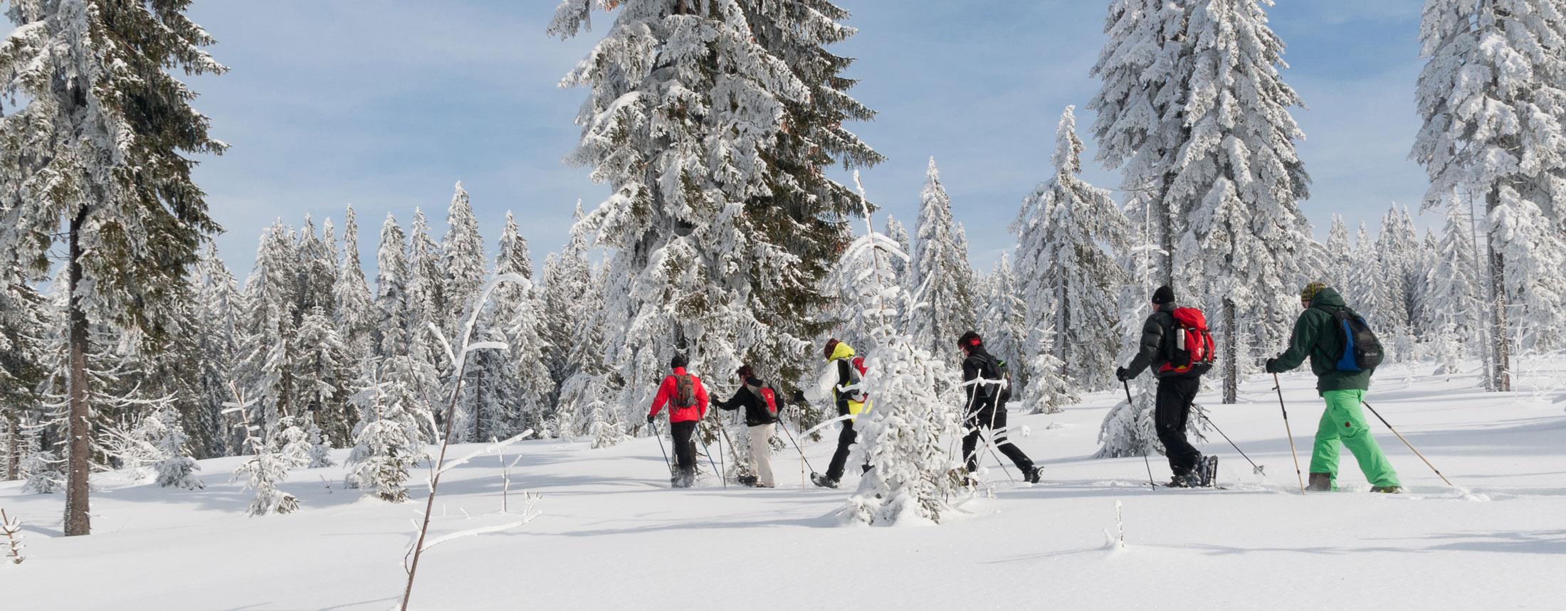 Schneeschuhwandern___7001217_.jpg